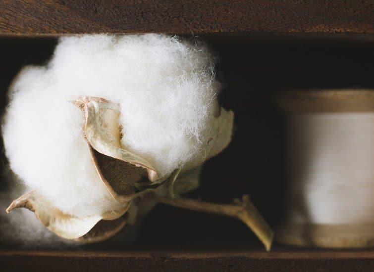Textile Rohstoffe: Pflanzen- und Chemiefasern